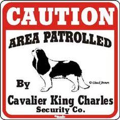 Cavalier King Charles Spaniel SIGN