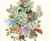 Original Succulent Garden Watercolor Painting -5 x 7