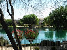 Sahuarita Lake great for family outings. Enjoy the Arizona weather! Green Valley, Family Outing, Tucson, Arizona, Scene, Weather, Community, Spaces, Nature