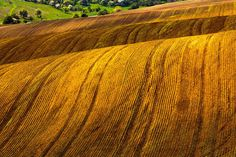 Brown Waves by Evgeni Dinev on 500px