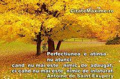Perfectiunea  e atinsa nu atunci  cand nu  mai este nimic de adaugat ci cand nu…