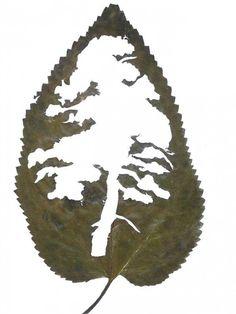 Lorenzo Duran - Leaf art