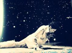 Prince performances appearances 2011 - 454 x 335
