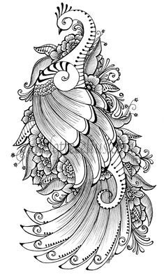 Ink pen drawing of a peacock, inspired by henna. By Charlotte Celius Ink pen drawing of a peacock, inspired by. Henna Drawings, Zentangle Drawings, Pencil Art Drawings, Bird Drawings, Peacock Drawing, Peacock Painting, Peacock Art, Peacock Sketch, Peacock Tattoo