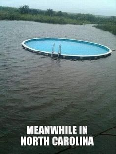 Above Ground Pool, In Ground Pools, Weather Memes, Meanwhile In, Funny Picture Quotes, Funny Quotes, My Town, Art Blog, Gardening Tips
