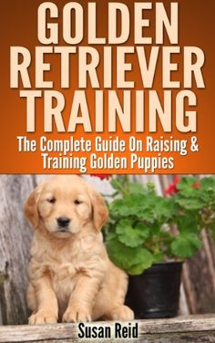 Golden Retriever Training:  Breed Specific Puppy Training Techniques, Potty Training, Discipline, and Care Guide, http://www.amazon.com/dp/B00BFH8HQ6/ref=cm_sw_r_pi_awdm_NEsctb1JH1M5Z