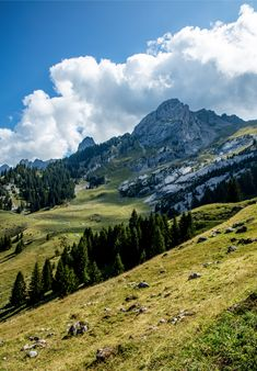 The Trou de la Mouche in La Clusaz, Haute Savoie is a great walk for fit people. The walk to the top is amazing but be prepared for a sporty journey! Organic Restaurant, Great Walks, Basque Country, Crystal Clear Water, Yoga Retreat, Horseback Riding, Journey, Sporty, France