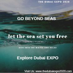 let the sea set you free and dive within the waves to relax in under water resorts. Dubai Safari, Expo 2020, Set You Free, Resorts, Underwater, Diving, Relax, Waves, Let It Be