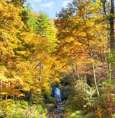 Fall in the Smoky Mountains -- Simply beautiful!