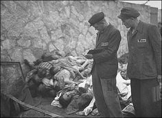 survivors count corpses of prisoners killed in mauthausen camp  The Undeniable Holocaust: A Pictorial Archive of Nazi Atrocities
