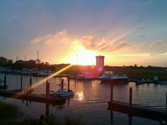 One of the many reasons I love living in Charleston! Doesn't get much better!