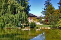 My idea of a secret hide away. This is actually a portion of the beautiful garden city of Pau, Pyrenees - France.