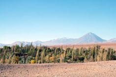Désert d'Atacama Chili