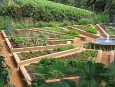 Potager Garden Layout Ideas - Bing Images