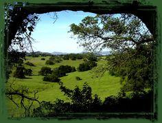 Santa Rosa Plateau Ecological Reserve, 8,300 natural acres in Murrieta, California