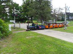 """14"""" gauge steam train run across museum's road near entrance gate."""