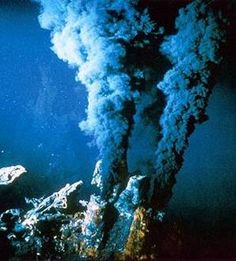 Communities of species previously unknown to science have been discovered on the seafloor near Antarctica, clustered in the hot, dark environment surrounding hydrothermal vents.