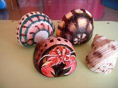 Rockpainting -  Hermit Crab 0001