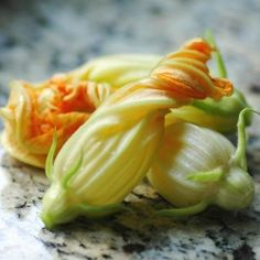 Zucchini blossoms ready to be filled with ricotta and basil, tempura-dipped and fried.... Delicious!