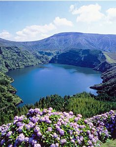 Google Image Result for http://www.azores-islands.info/media/index-image.jpg
