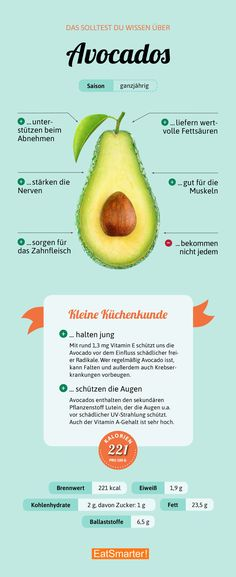 Avocado >>>>> auch interessant >> SENIOREN - DER TRAUM VON LEBENSABEND ++ Biete 2-er-WG alt + jung >> www.Lebensabendvision.de << #Küchenkunde #Ernährung #Lebensmittel
