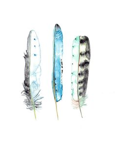 A lovely creation. Feather Print Boho Feather Art Watercolour Feathers by WinterOwls
