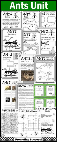 This ants teaching unit is packed with fun activities for kids. There are printable nonfiction reading passages, comprehension pages, graphic organizers, worksheets, ants life cycle diagram, body parts diagram, accordion book, task cards, scavenger hunt game, more game ideas, writing papers, story starters, mazes, word find, crossword and a quiz.