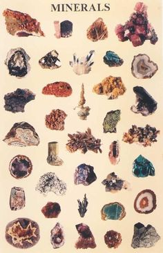 Minerals #minerals #crystals #rocks.  Gabi LOVES learning about rocks!