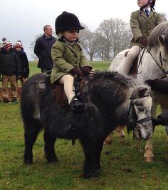 Tiny pony and rider!
