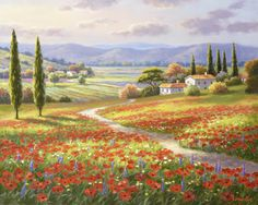 Product Categories Sung Kim | Bentley Licensing Group-Poppy Fields