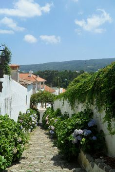 Picturesque alley in Monchique, Algarve Coast, Portugal (by lugaraul).