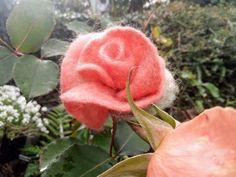 Peach Flowers, Winter Flowers, Fresh Flowers, Rose Gift, Flower Brooch, Little Gifts, Envelopes, Hippie Boho, Hair Clips