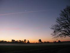 Morgens in der Sassenburger Natur