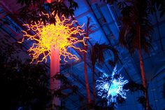 Dale Chihuly Glass Art ...