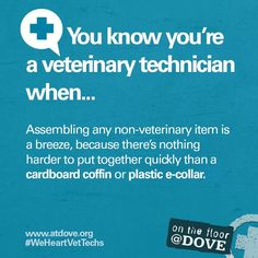 You know you're a Veterinary Technician when ...