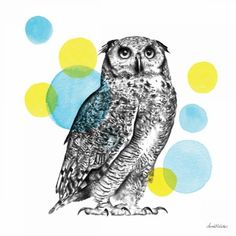 Trademark Fine Art 'Sketchbook Lodge Owl Neutral' Canvas Art by Lamai Mccartan, Size: 14 x White Blue Yellow Grey, Brown And Grey, Canvas Artwork, Canvas Prints, Big Canvas, Canvas Size, Neutral Canvas Art, Owl Graphic, Painting Prints
