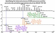 Monitoring the On-Surface Synthesis of Graphene Nanoribbons by Mass Spectrometry