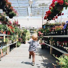 baby boy. greenhouse. children. flowers.