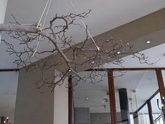 Branches hanging from the ceiling....novel idea!!