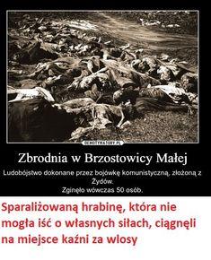 #JewishCrimes We wrześniu 1939 banda składający się z Żydów i Białorusinów, dowodzona przez Żyda Zusko Ajzika, zamordował 50 Polaków we wsi Brzostowica Mała. Bandyci związali ofiarom ręce drutem kolczastym, kazali jeść wapno i zakopali żywcem.pic.twitter.com/UrK8mX1ncw Poland History, What The Heck, Geology, Wwii, Retro, Shakira, Literatura, World War Ii, Rustic