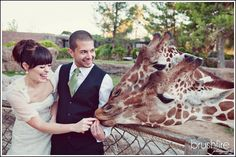 love it! i would love to have a wedding photoshoot at the zoo!!!!!! just no animal poop on my dress please!