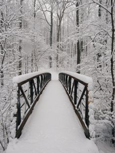 winter wonderland... reminds me of narnia somehow :) [Wonderful snow covered bridge!]