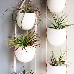 Ceramic Plant Hangers by Farrah Sit