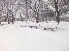Winter 2010 in Songpa Korea.