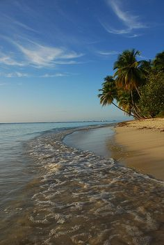 Tobago beach - Caribbean