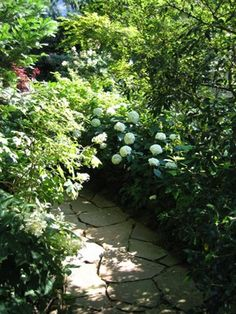 Garden path at Ryan Gaineys