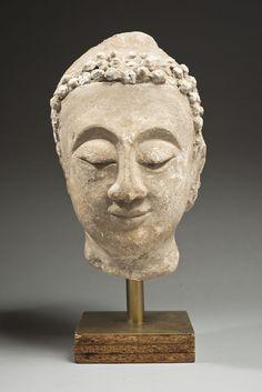 Grande tête de bouddha en grès beige clair, les yeux mi-clos, la coiffe ornée de boucles ondulées en stuc. Thaïlande, XVe siècle