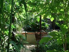 Alternative Eden Exotic Garden: The Beginning of the End