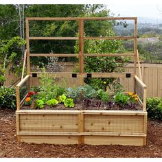 Create the perfect kitchen garden using this long-lasting Outdoor Living Today Raised Garden Bed with Trellis Lid. Elevated Garden Beds, Cedar Raised Garden Beds, Cedar Garden, Raised Beds, Runner Beans, Steel Pergola, Growing Mushrooms, Orchid Care, Garden Seeds