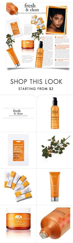 """Skin care - orange"" by gmg5 ❤ liked on Polyvore featuring beauty, philosophy, Beautiful People, Anatomicals, Crate and Barrel, Clinique, Hera and Origins"